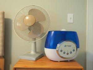 fan and humdifier